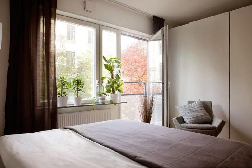 Окно украшено большим количеством живых цветов