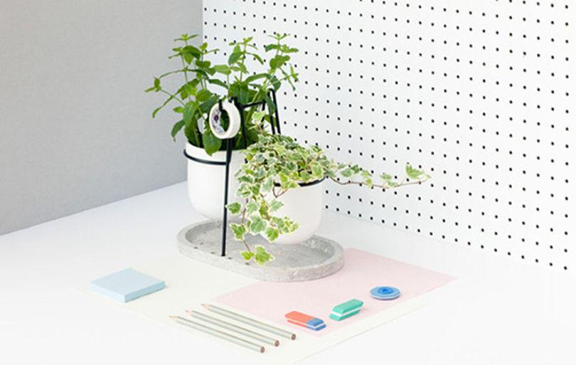 Цветочный горшок и подставка для канцелярии
