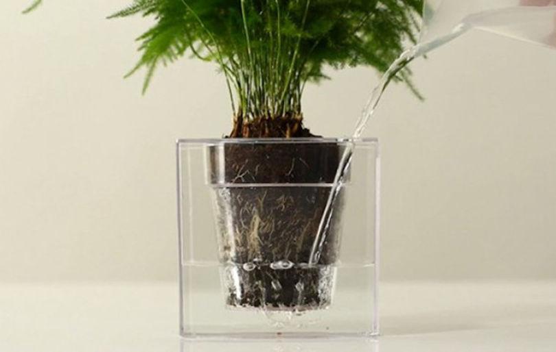 Горшок с системой самостоятельного полива - Boskke Cube