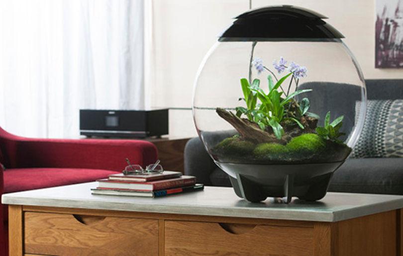 Горшок-аквариум biOrb Air
